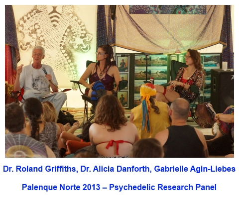 Dr. Roland Griffiths, Dr. Alicia<br /> Danforth, and Gabrielle Agin-Liebes on the Psychedelic Research Panel for the 2013 Palenque Norte Lectures at Burning Man