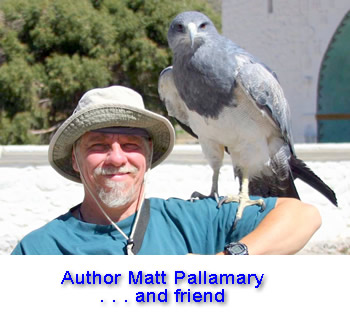 Author and shaman Matt Pallamary and his eagle friend